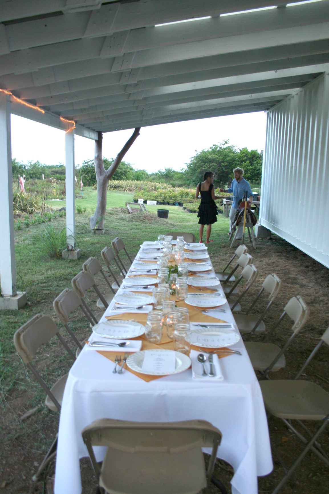 A formally set table for twelve, with flowers and candles, looks elegant under a barn roof overhang at ARTfarm, with pineapple groves in the background and a glimpse of the Caribbean Sea beyond.