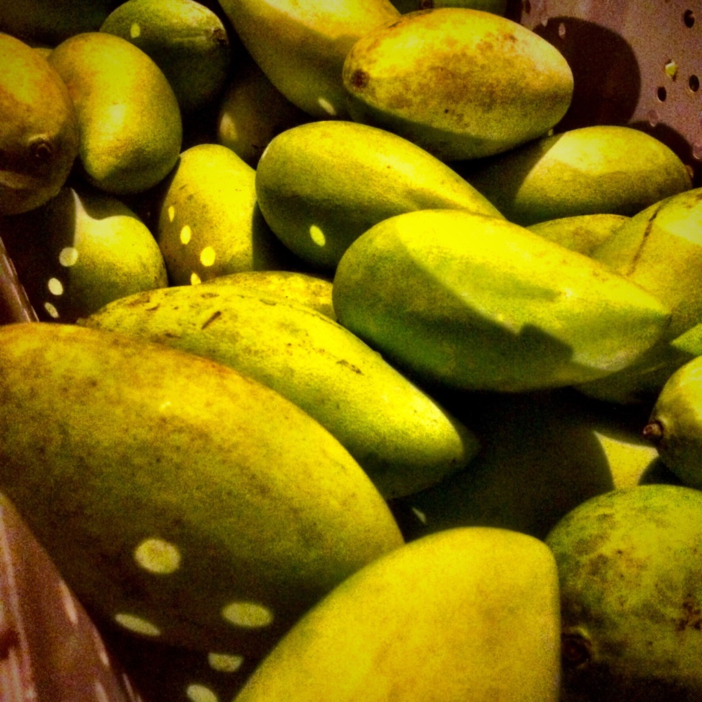Ripe, green skinned mangoes are piled in a tub for market.