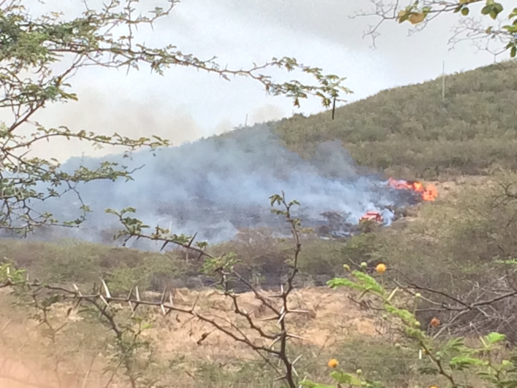 A clearer image of the firetruck up in the bush. A team of firefighters were working to extinguish the north head of the fire that was moving toward homes up the hill.