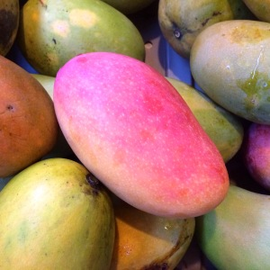 The color contrast of a Valencia Pride mango, with a gradation of hot pink to a warm yellow, stands out atop a pile of green and orange mangoes.