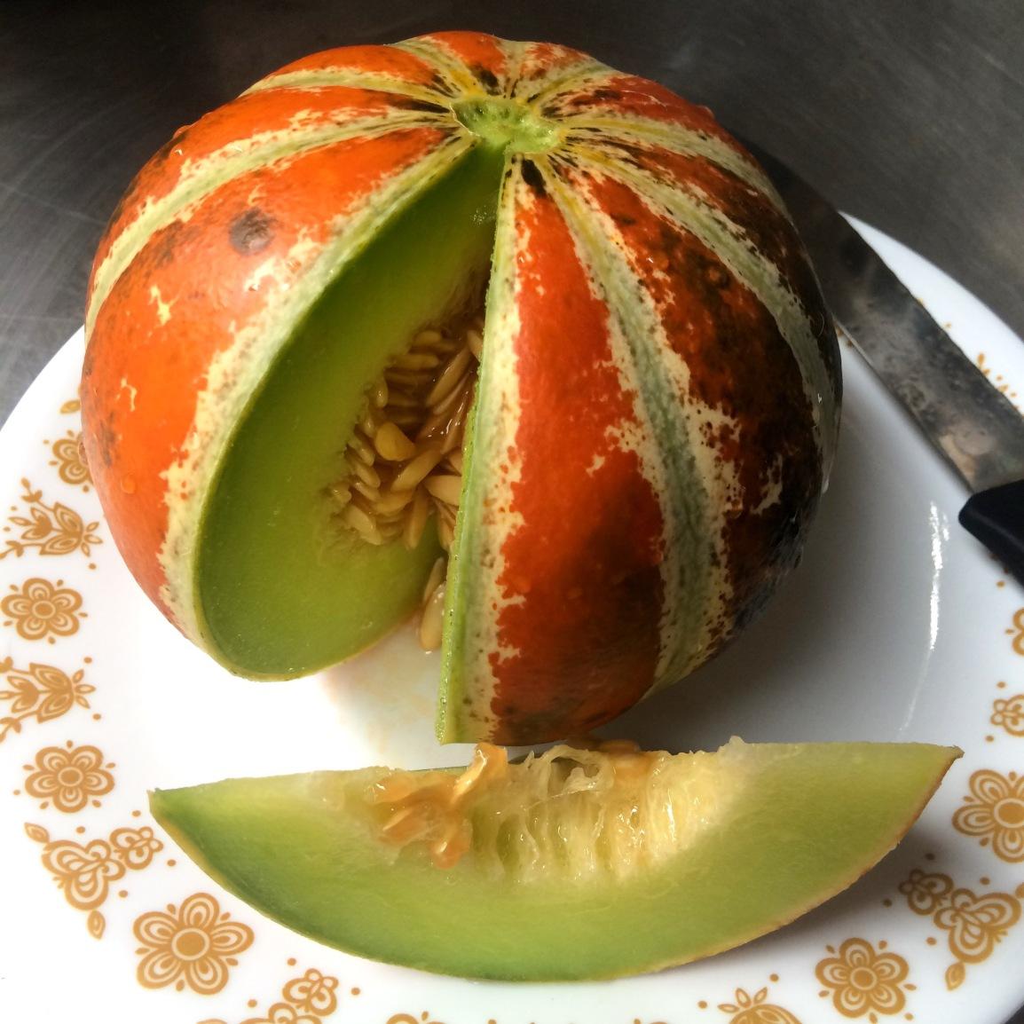 Wednesday 3-6pm: It's a Gourd, It's a Pumpkin,It's…