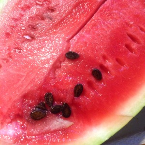 Cray-cray...this watermelon is sweeeeeet! You can save the seeds for roasting like pumpkin seeds.