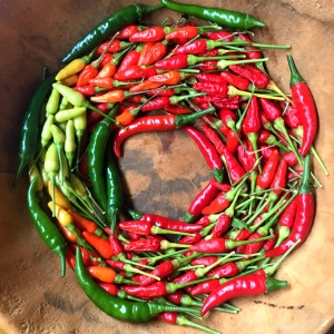 A Christmas wreath made of different types of ARTfarm hot peppers