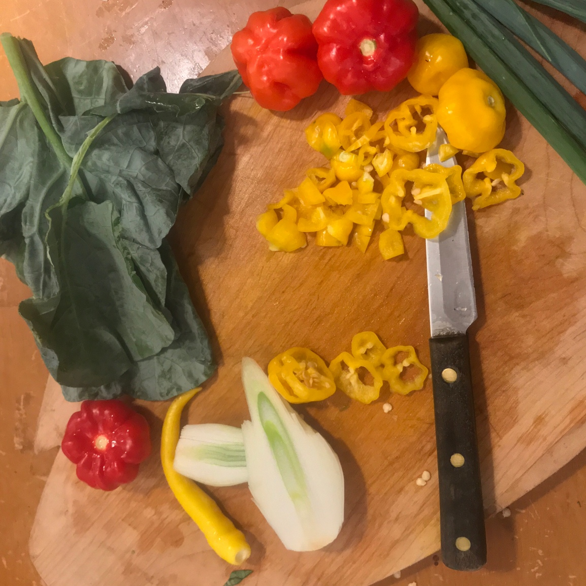Wellness Blast Thai-ish Soup Recipe