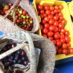 Baskets and tubs of cherry tomatoes, slicer tomatoes and fresh figs, just in from the field at ARTfarm.