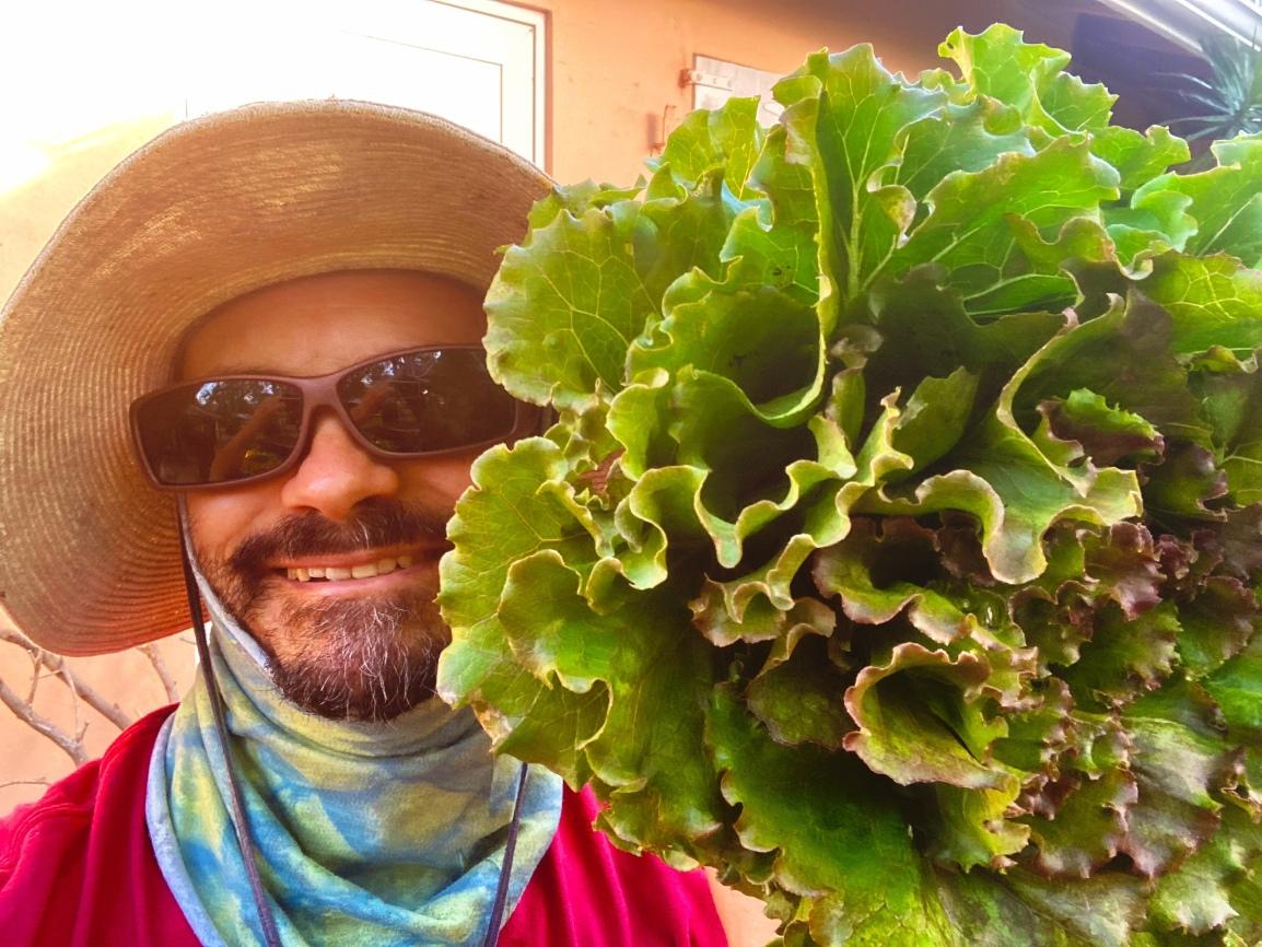 ARTfarm June 26th Salad greens Pop-up This Saturday,11am–11:30am.